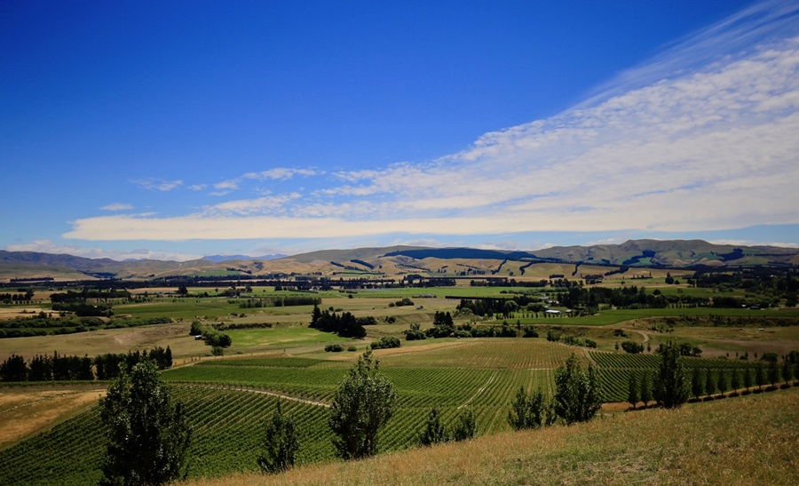 Greystone-PurePod-view-across-the-Waipara-Valley